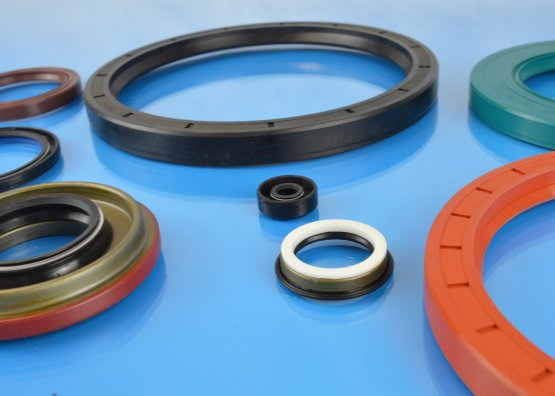 Small and Large Oil Seals